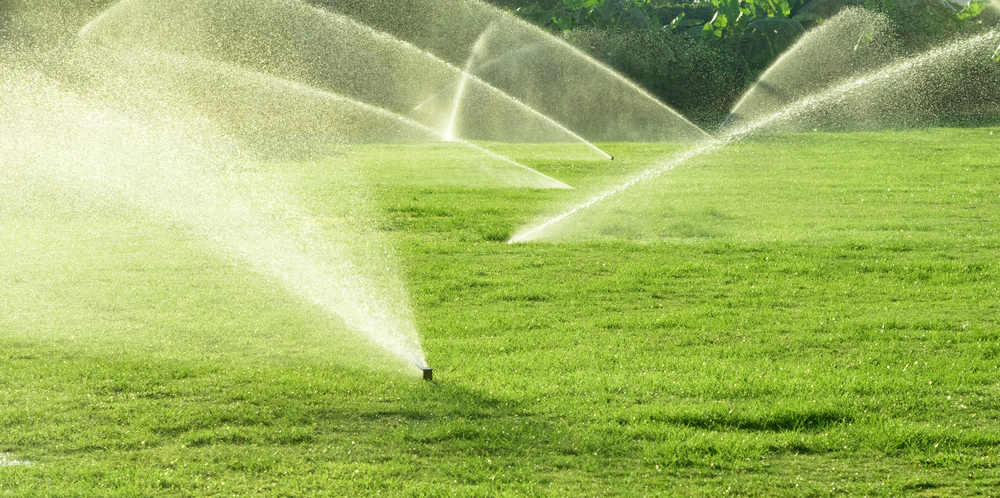 Despite water scarcity: Pakistan helps farmers in enhancing agriculture  production - E Agriculture Service for Farmers – Bakhabar Kissan